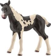 Schleich Farm World Pferde - 13803 Pinto Fohlen, ab 3 Jahre